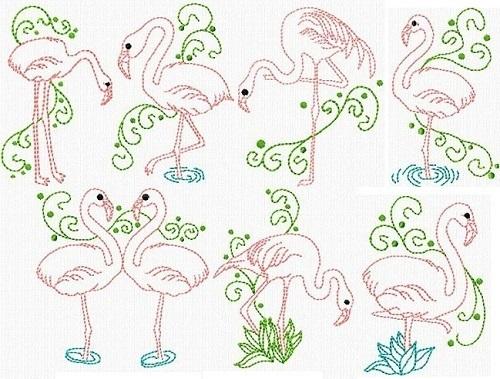 Flamingo Sketches